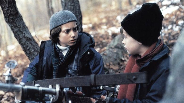 Добрият син (1993) Гледай онлайн