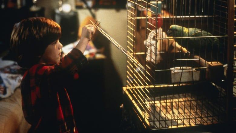 Сам вкъщи 3 (1997) - Гледай онлайн
