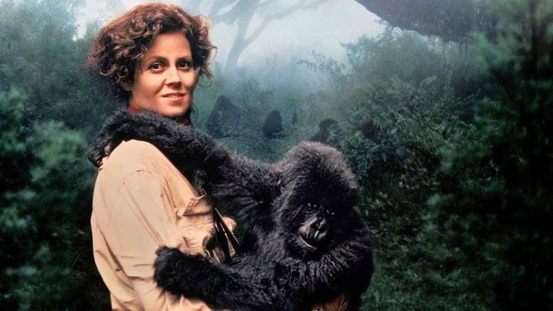 Горили в мъглата (1988) - Гледай онлайн