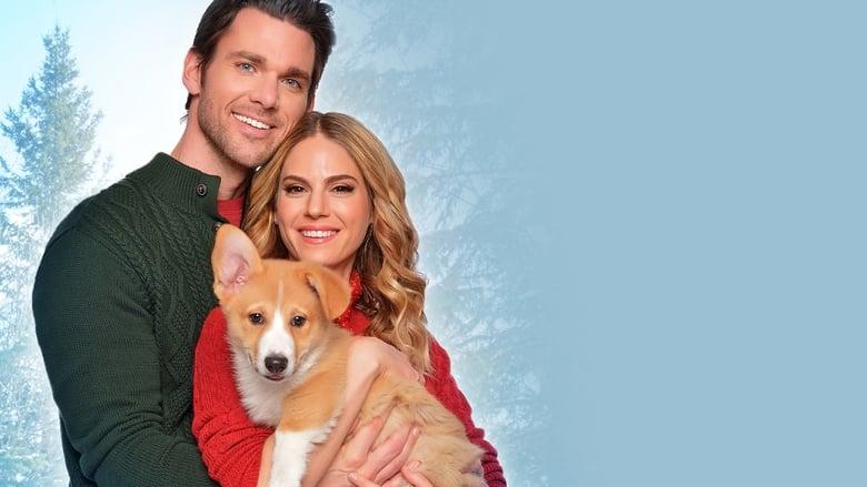Велела Корги Коледа (2019) - Гледай онлайн